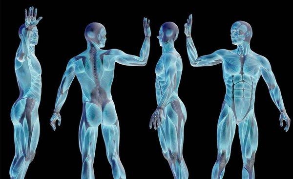 Η κοινωνική διάσταση του σώματος